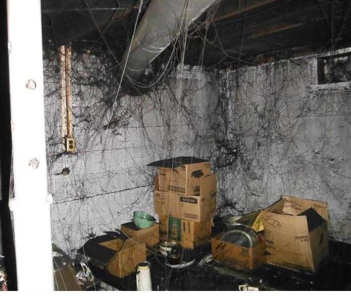 Fire Damage Leave Smoke Damage to the Professionals